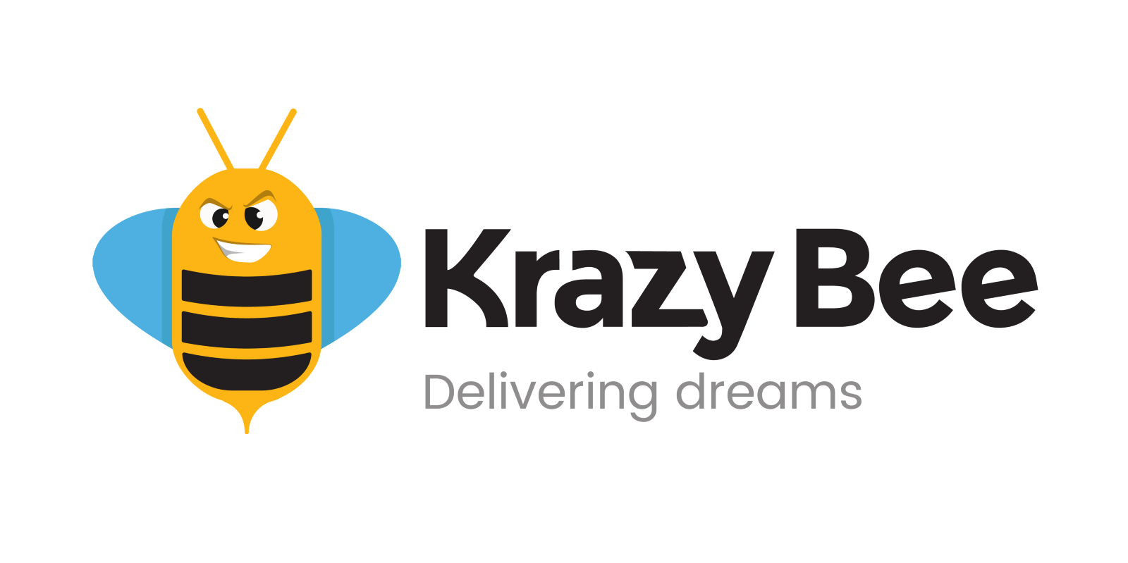 Krazy Bee Xiaomi Investition
