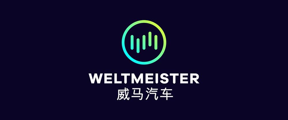 weltmeister logo von strichpunkt