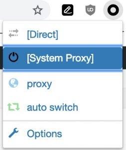 proxy ein und ausschalten im Browser